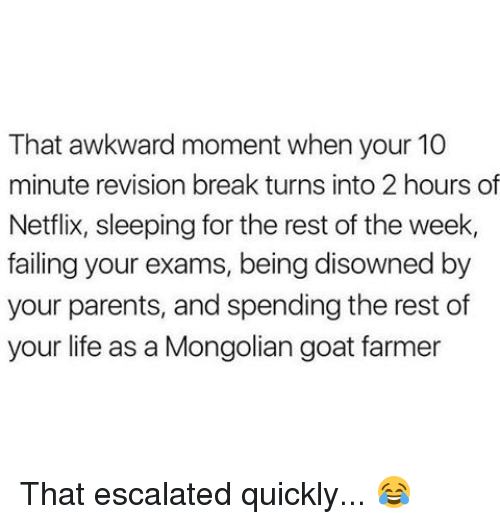 Memes, Netflix, and Goat: That awkward moment when your 10  minute revision break turns into 2 hours of  Netflix, sleeping for the rest of the week,  failing your exams, being disowned by  your parents, and spending the rest of  your life as a Mongolian goat farmer That escalated quickly... 😂