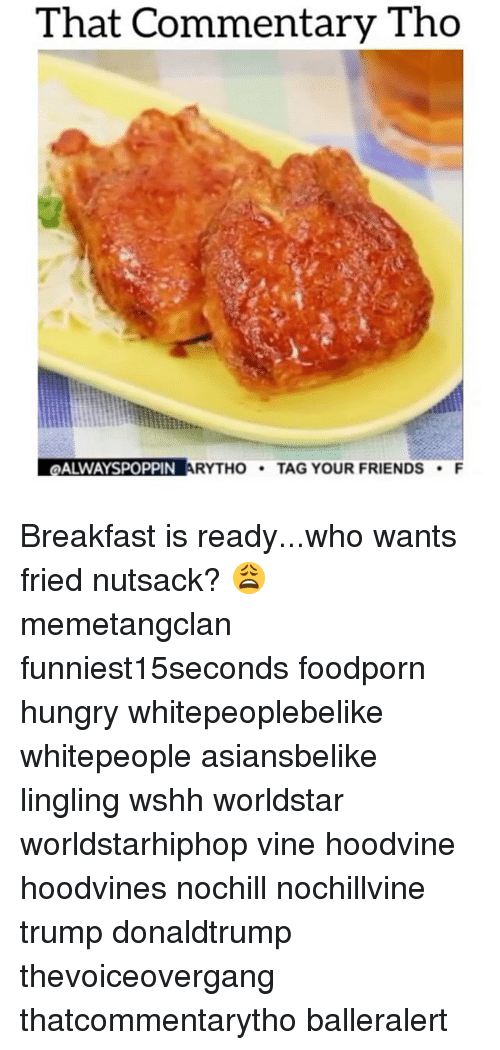 Hungry, Memes, and Vine: That Commentary Tho  ALWAYSPOPPIN ARYTHO  TAG YOUR FRIENDS  F Breakfast is ready...who wants fried nutsack? 😩 memetangclan funniest15seconds foodporn hungry whitepeoplebelike whitepeople asiansbelike lingling wshh worldstar worldstarhiphop vine hoodvine hoodvines nochill nochillvine trump donaldtrump thevoiceovergang thatcommentarytho balleralert
