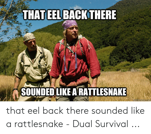 dual survival: THAT EEL BACK THERE  SOUNDED LIKE ARATTLESNAKE  ackmenme.com that eel back there sounded like a rattlesnake - Dual Survival ...