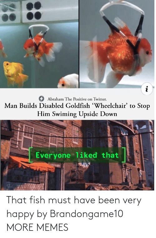 Fish: That fish must have been very happy by Brandongame10 MORE MEMES