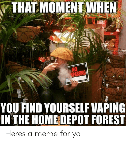 Depot: THAT MOMENT WHEN  NO  YOU FIND YOURSELF VAPING  IN THE HOME DEPOT FOREST Heres a meme for ya