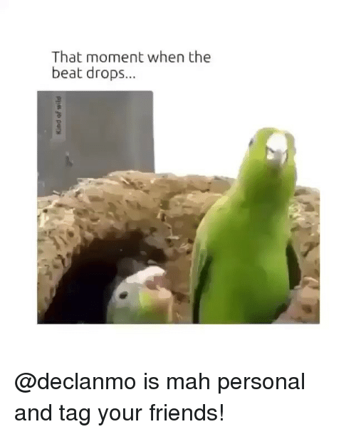 Beat Drop: That moment when the  beat drops... @declanmo is mah personal and tag your friends!