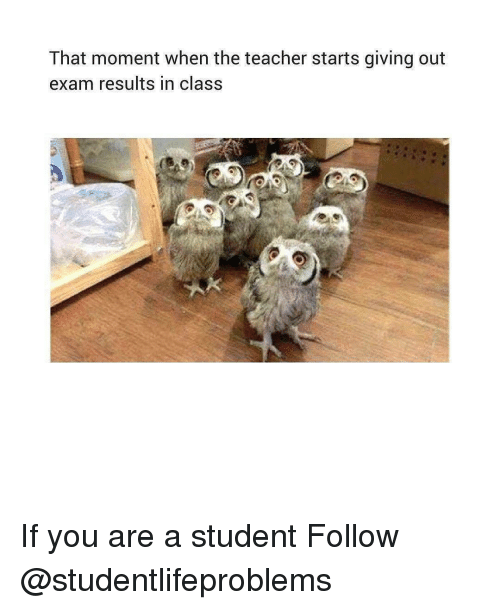 Teacher, Tumblr, and Http: That moment when the teacher starts giving out  exam results in class If you are a student Follow @studentlifeproblems