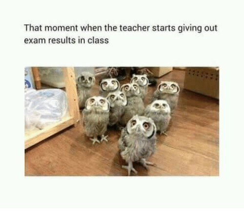 Teacher, Class, and Moment: That moment when the teacher starts giving out  exam results in class