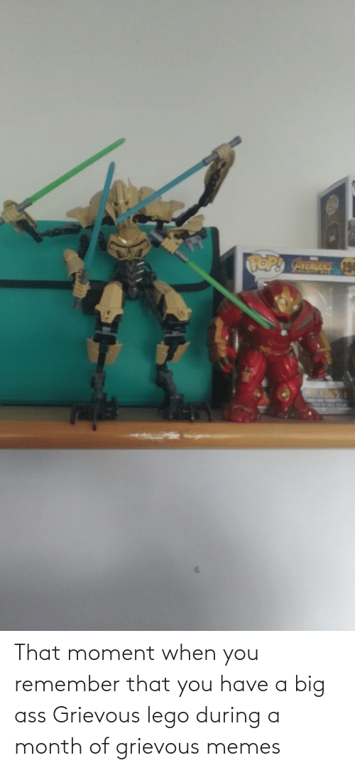 that moment when: That moment when you remember that you have a big ass Grievous lego during a month of grievous memes