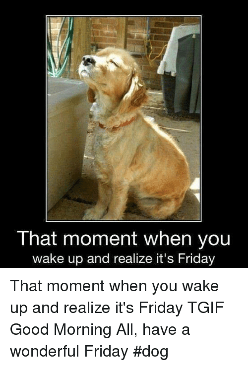 That Moment When You Wake Up And Realize Its Friday That Moment