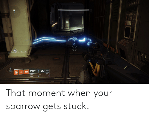 that moment when: That moment when your sparrow gets stuck.