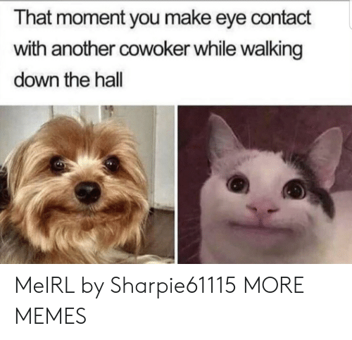 Dank, Memes, and Target: That moment you make eye contact  with another cowoker while walking  down the hall MeIRL by Sharpie61115 MORE MEMES