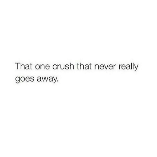 Crush, Never, and One: That one crush that never really  goes away.