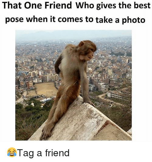 Memes, Best, and 🤖: That One Friend Who gives the best  pose when it comes to take a photo 😂Tag a friend