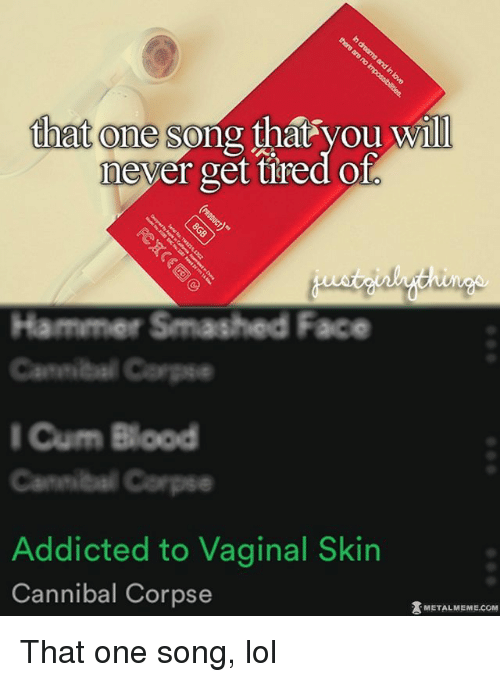 Vaginity: that one song  that you will  never get tired Ol  Hammer Smashed Face  Cannibal Carps  I Cum Blood  Addicted to Vaginal Skin  Cannibal Corpse  METAL MEME COM That one song, lol