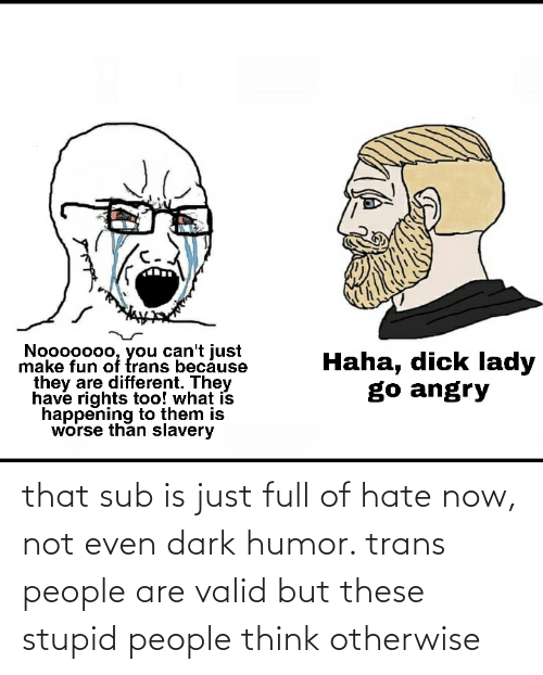 otherwise: that sub is just full of hate now, not even dark humor. trans people are valid but these stupid people think otherwise
