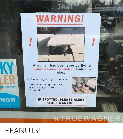 "Lottery: That  WARNING!  KY  LER  A woman has been spotted living  under a concrete slab outside our  shop.  She will grab your ankle  She won't let go until you  say the magic word  (""Peanuts"")  calottery  NOW  IF SPOTTED, PLEASE ALERT  STORE MANAGER  GAMDLEH MUSt te 16 years of oldec ta  Marna Lottery 8.500 9  @TRUEWAGNER PEANUTS!"
