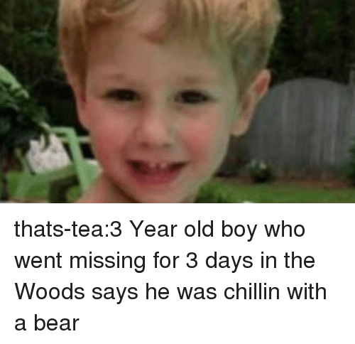 in the woods: thats-tea:3 Year old boy who went missing for 3 days in the Woods says he was chillin with a bear