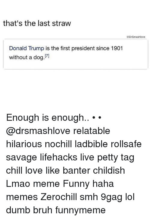 lifehacks: that's the last straw  @DrSmashlove  Donald Trump is the first president since 1901  without a dog Enough is enough.. • • @drsmashlove relatable hilarious nochill ladbible rollsafe savage lifehacks live petty tag chill love like banter childish Lmao meme Funny haha memes Zerochill smh 9gag lol dumb bruh funnymeme