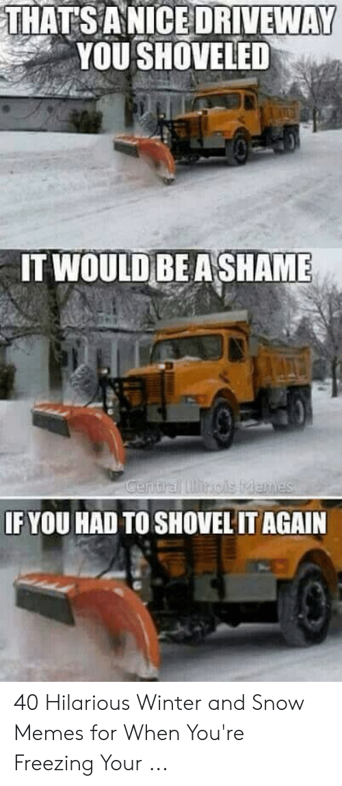 Funny Snow Memes: THATSANICE DRIVEWAY  YOU SHOVELED  IT WOULD BE ASHAME  IF YOU HAD TO SHOVEL IT AGAIN 40 Hilarious Winter and Snow Memes for When You're Freezing Your ...
