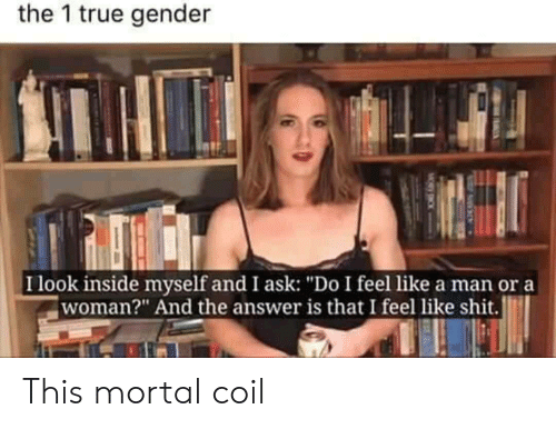 """Shit, True, and Answer: the 1 true gender  I look inside myself and I ask: """"Do I feel like a man or a  woman?"""" And the answer is that I feel like shit. This mortal coil"""