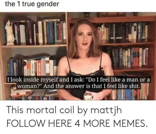 """And The Answer Is: the 1 true gender  I look inside myself and I ask: """"Do I feel like a man or a  woman?"""" And the answer is that I feel like shit. This mortal coil by mattjh FOLLOW HERE 4 MORE MEMES."""