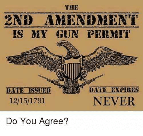 Memes, Date, and Never: THE  2ND AMENDMENT  IS MY GUN PERMI  DATE EXPIRES  NEVER  DATE ISSUED  12/15/1791  Do You Agree?