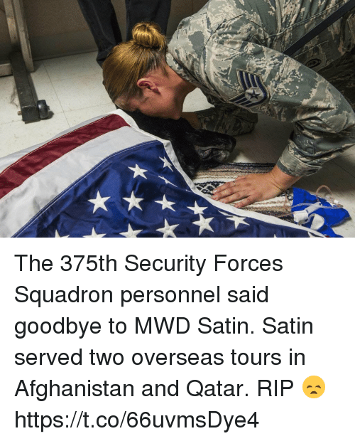 Memes, Afghanistan, and Qatar: The 375th Security Forces Squadron personnel said goodbye to MWD Satin. Satin served two overseas tours in Afghanistan and Qatar. RIP 😞 https://t.co/66uvmsDye4