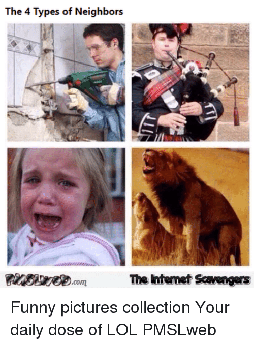 Your Daily Dose: The 4 Types of Neighbors  The Intemet Scavengers <p>Funny pictures collection  Your daily dose of LOL  PMSLweb </p>