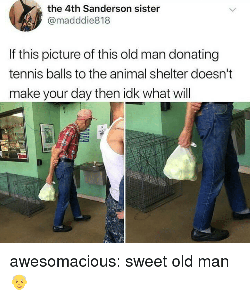 tennis balls: the 4th Sanderson sister  @madddie818  If this picture of this old man donating  tennis balls to the animal shelter doesn't  make your day then idk what will awesomacious:  sweet old man👴