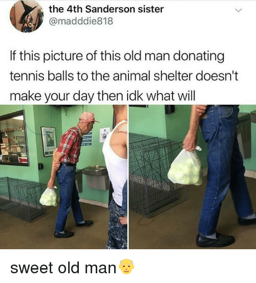 tennis balls: the 4th Sanderson sister  @madddie818  If this picture of this old man donating  tennis balls to the animal shelter doesn't  make your day then idk what will sweet old man👴