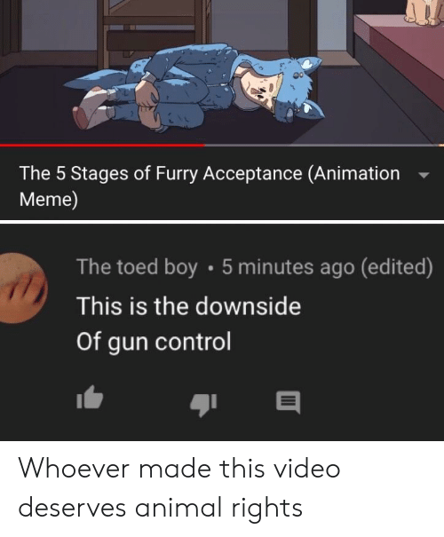 Animation Meme: The 5 Stages of Furry Acceptance (Animation  Meme)  The toed boy 5 minutes ago (edited)  This is the downside  Of gun control Whoever made this video deserves animal rights