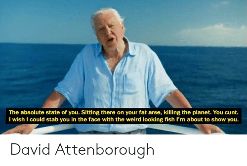 Your Fat: The absolute state of you. Sitting there on your fat arse, killing the planet. You cunt.  I wish I could stab you in the face with the weird looking fish I'm about to show you. David Attenborough