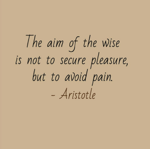 aim: The aim of the wWise  pleasure,  is not to secure  but to avoid pain.  - Aristotle