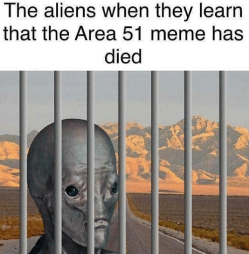 Meme, Aliens, and Area 51: The aliens when they learn  that the Area 51 meme has  died