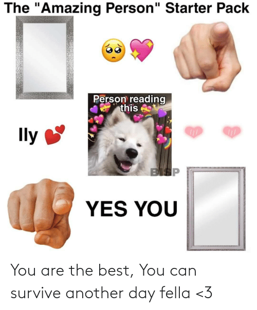 "Best, Starter Pack, and Amazing: The ""Amazing Person"" Starter Pack  Person reading  this  Ily  BISP  YES YOU You are the best, You can survive another day fella <3"
