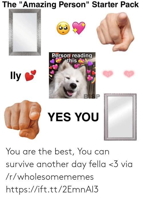 "pack: The ""Amazing Person"" Starter Pack  Person reading  this  Ily  BISP  YES YOU You are the best, You can survive another day fella <3 via /r/wholesomememes https://ift.tt/2EmnAl3"