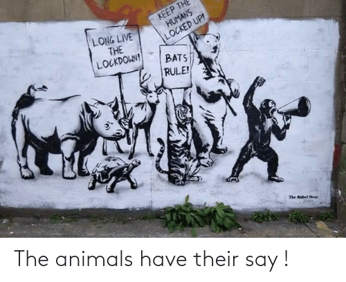 say: The animals have their say !