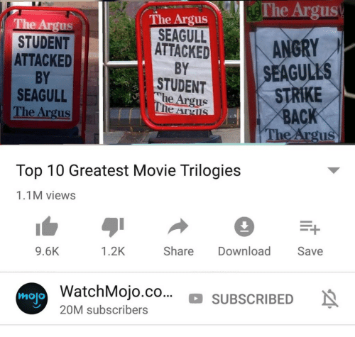 strike back: The Argus  The Argus  SEAGULLANGRY  STUDENT  ATTACKED  BY  SEAGULL  The Argus  ATTACKED  BY  STUDENT  he Argus  SEAGUL  STRIKE  BACK  The Argu  Top 10 Greatest Movie Trilogies  1.1M views  9.6K  1.2K  Share Download Save  atchMojo.co... SUBSCRIBEDN  mojo  20M subscribers