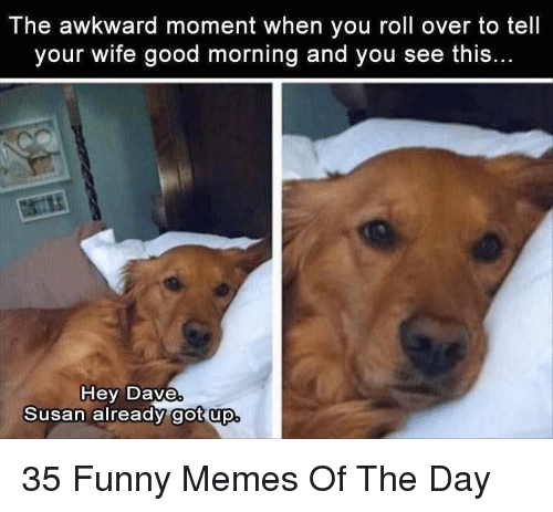 Funny, Memes, and Awkward: The awkward moment when you roll over to tell  your wife good morning and you see this  Hey Dave  Susan already got up 35 Funny Memes Of The Day