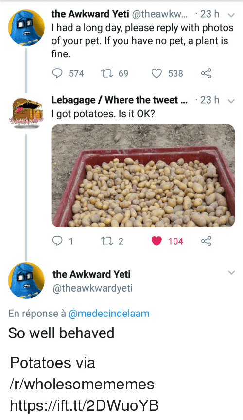 Awkward Yeti, Awkward, and Yeti: the Awkward Yeti @theawkw... 23 h v  I had a long day, please reply with photos  of your pet. If you have no pet, a plant is  fine.  Lebagage/Where the tweet  I got potatoes. Is it OK?  23 h v  the Awkward Yeti  @theawkwardyeti  En réponse à @medecindelaam  So well behaved Potatoes via /r/wholesomememes https://ift.tt/2DWuoYB