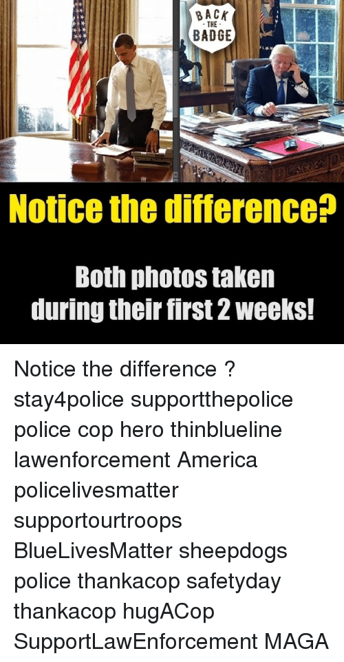 Sheepdog Police: THE  BADGE  Notice the difference  Both photos taken  during their first 2 weeks! Notice the difference ? stay4police supportthepolice police cop hero thinblueline lawenforcement America policelivesmatter supportourtroops BlueLivesMatter sheepdogs police thankacop safetyday thankacop hugACop SupportLawEnforcement MAGA