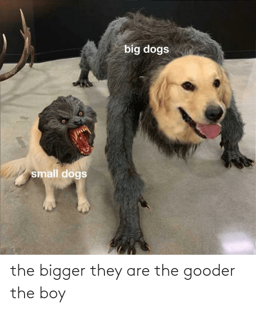 They Are: the bigger they are the gooder the boy