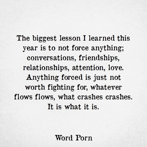 it is what it is: The biggest lesson I learned this  year is to not force anything;  conversations, friendships,  relationships, attention, love.  Anything forced is just not  worth fighting for, whatever  flows flows, what crashes crashes.  It is what it is.  Word Porn