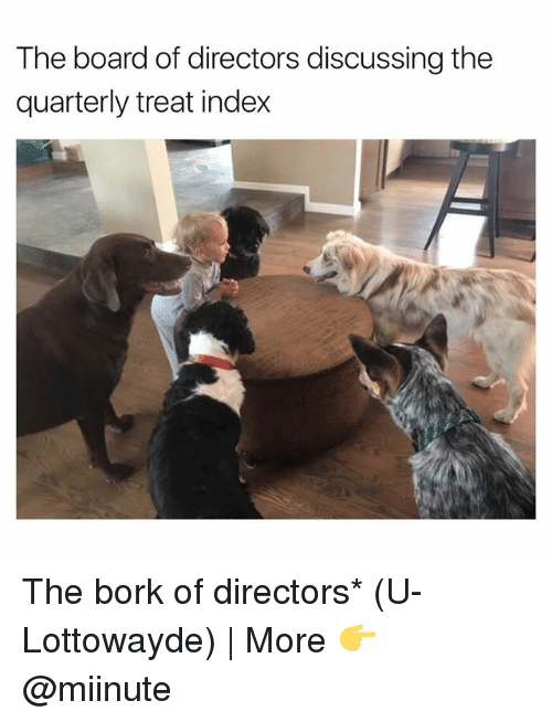 Borking: The board of directors discussing the  quarterly treat index The bork of directors* (U-Lottowayde) | More 👉 @miinute