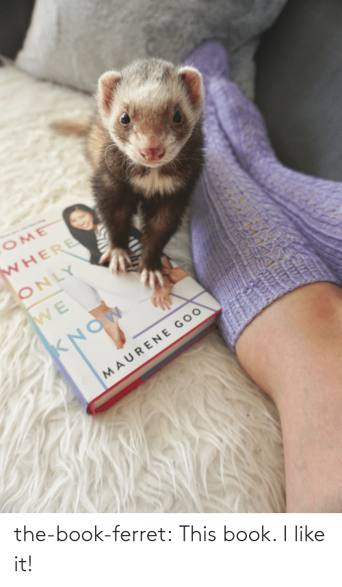 i like: the-book-ferret:  This book. I like it!