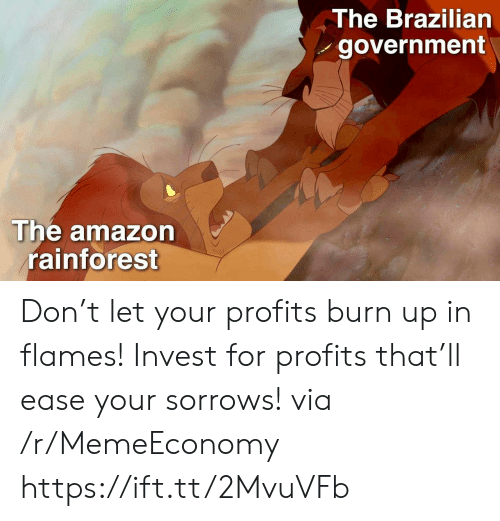 Brazilian: The Brazilian  government  The amazon  rainforest Don't let your profits burn up in flames! Invest for profits that'll ease your sorrows! via /r/MemeEconomy https://ift.tt/2MvuVFb