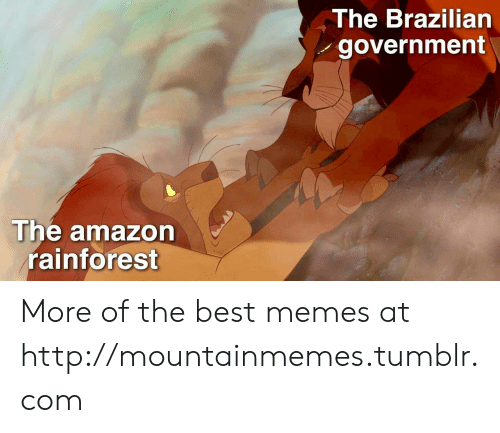 Brazilian: The Brazilian  government  The amazon  rainforest More of the best memes at http://mountainmemes.tumblr.com