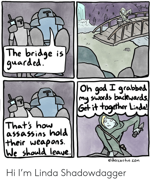 bridge: The bridge is  9uarded.  Oh god I grabbed  swords backwards  my  Get it together Lindaj  Thats how  assassins hold  their weapons.  We should leaue.  eldercactus.com Hi I'm Linda Shadowdagger