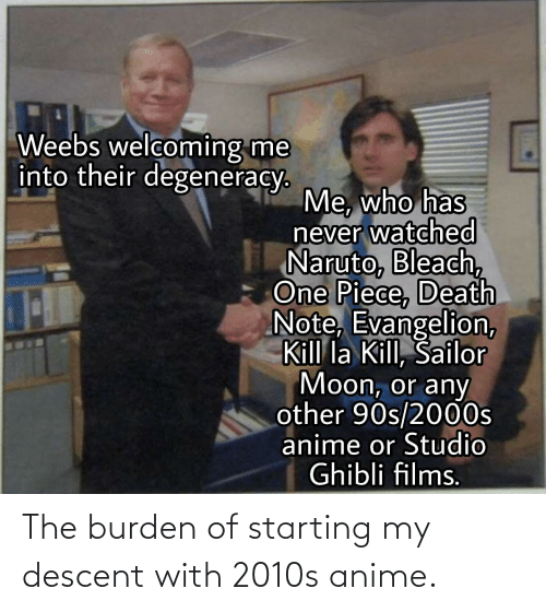 burden: The burden of starting my descent with 2010s anime.