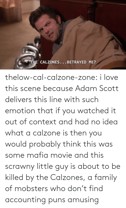 Adam Scott: THE CALZONES...BETRAYED ME? thelow-cal-calzone-zone:  i love this scene because Adam Scott delivers this line with such emotion that if you watched it out of context and had no idea what a calzone is then you would probably think this was some mafia movie and this scrawny little guy is about to be killed by the Calzones, a family of mobsters who don't find accounting puns amusing
