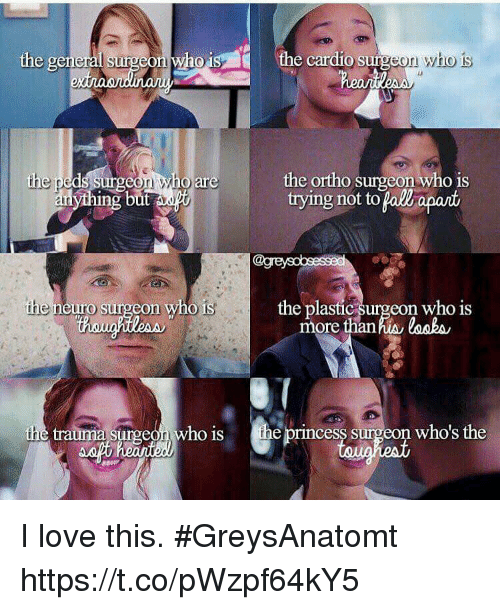 neuro: the cardio surgeon who is  the general surgeon who1  the ortho surgeon who is  trying not to pall apant  are  ing  the neuro surgeon who is  the plastic surgeon who is  more thanhis losbs  the trauma surgeon who is the princess surgeon who's the I love this. #GreysAnatomt https://t.co/pWzpf64kY5