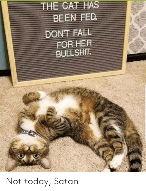 Today, Bullshit, and Satan: THE CAT HAS  BEEN FED  DONEAEΕ  FOR HER  BULLSHIT Not today, Satan