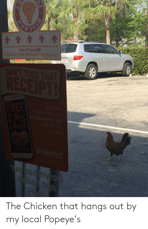 Popeye: The Chicken that hangs out by my local Popeye's
